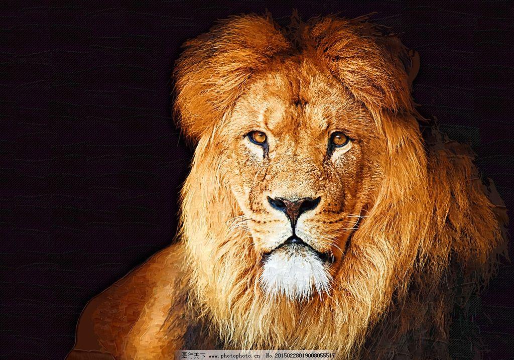 狮子 动物 油画 装饰画 挂画 手绘画  设计 文化艺术 绘画书法 360dpi