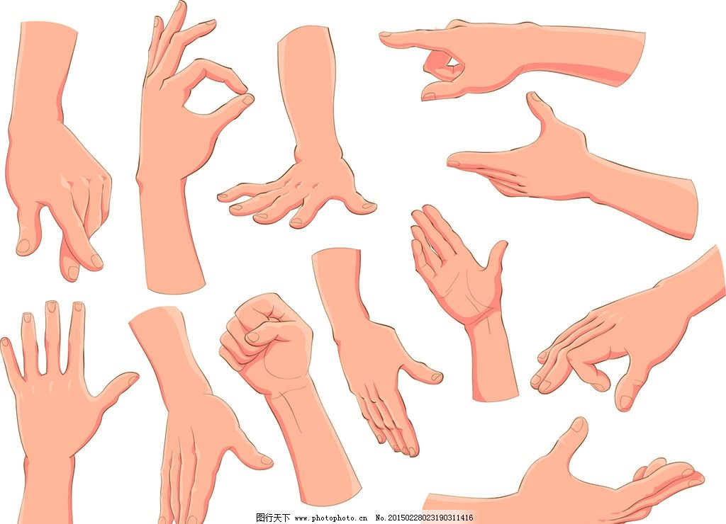 手势 手指 女人手 手部特写 手绘 逼真手 设计 生活人物 eps 设计