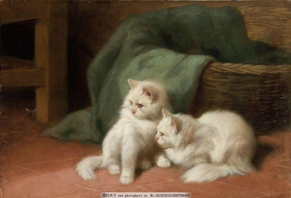 两只小白猫图片