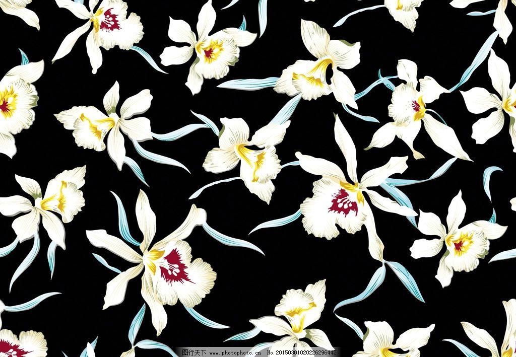 黑底小花朵图片