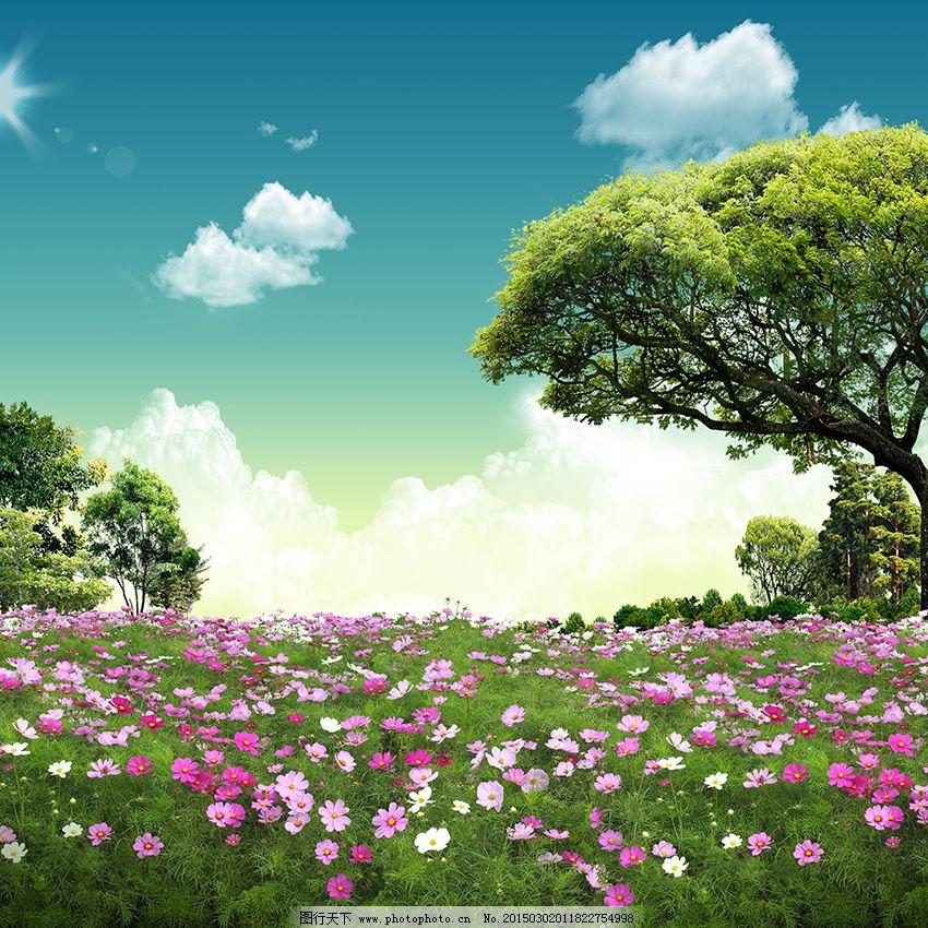 自然景观免费下载 白云 草地 大树 花海 蓝天 花海 大树 蓝天 草地