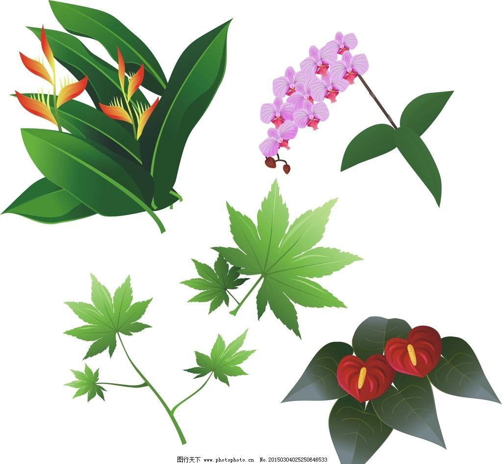 绿色 花草 手绘 时尚 梦幻 简洁 梦幻树叶 各种叶子 枫叶 矢量枫叶