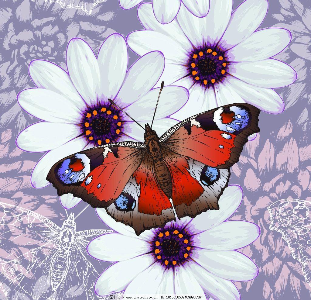 蝴蝶 彩色蝴蝶 手绘 花卉 菊花 翅膀 蝴蝶图案 矢量