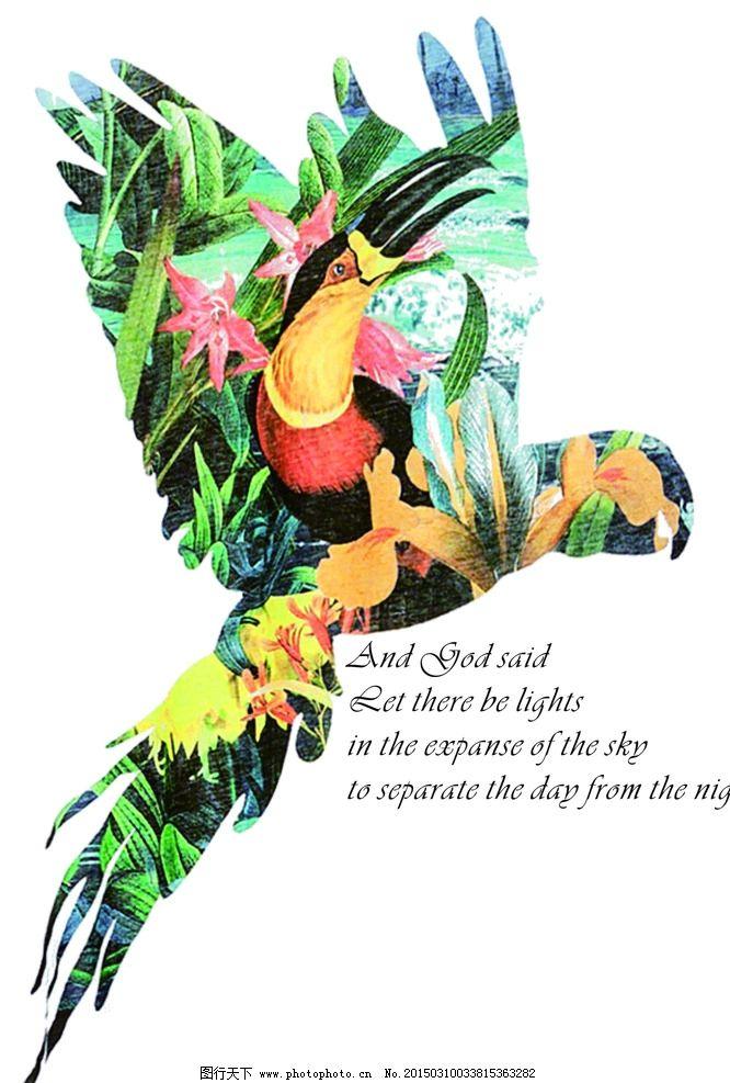 热带鹦鹉 鸟 动物 森林 文字 其他 图片素材