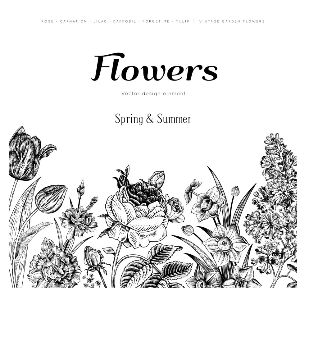 复古手绘花朵免费下载 复古 黑白 花朵 手绘 艺术 黑白 复古 手绘