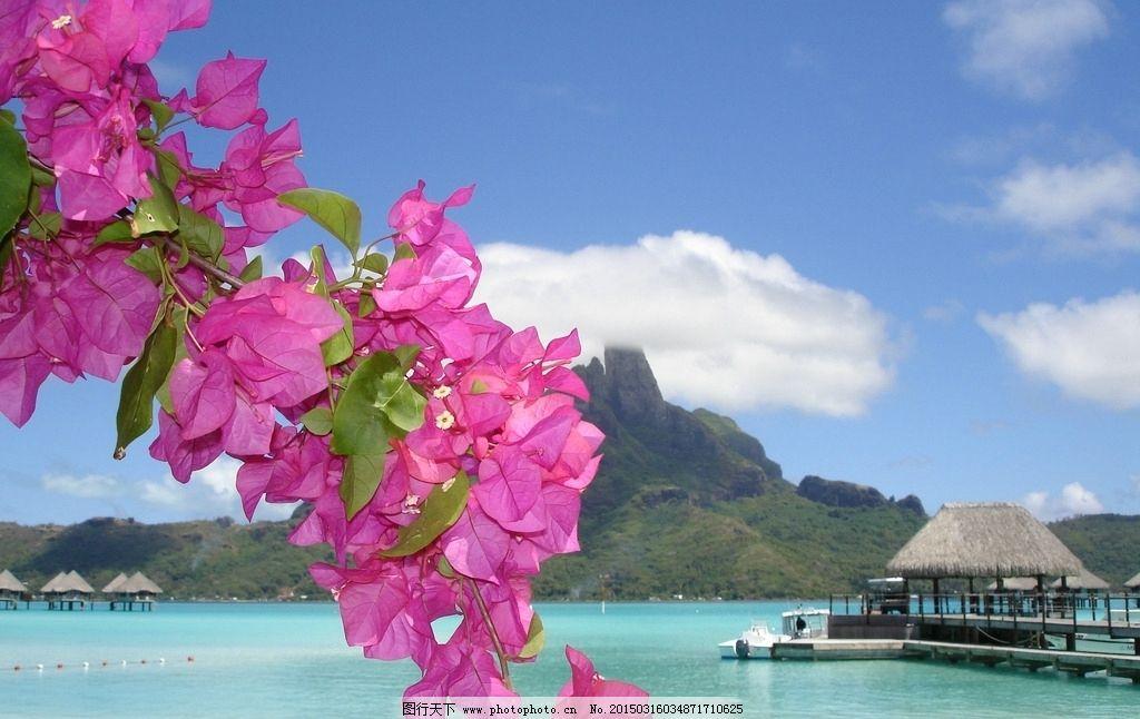 三角梅 蓝色海水 大海壁纸 海岛风光 海洋 水 岛 陆地 蓝色海洋 岛屿