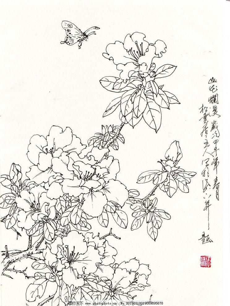 杜鹃花 线描 白描 写生 花卉 国画-花鸟 设计 文化艺术 绘画书法 556