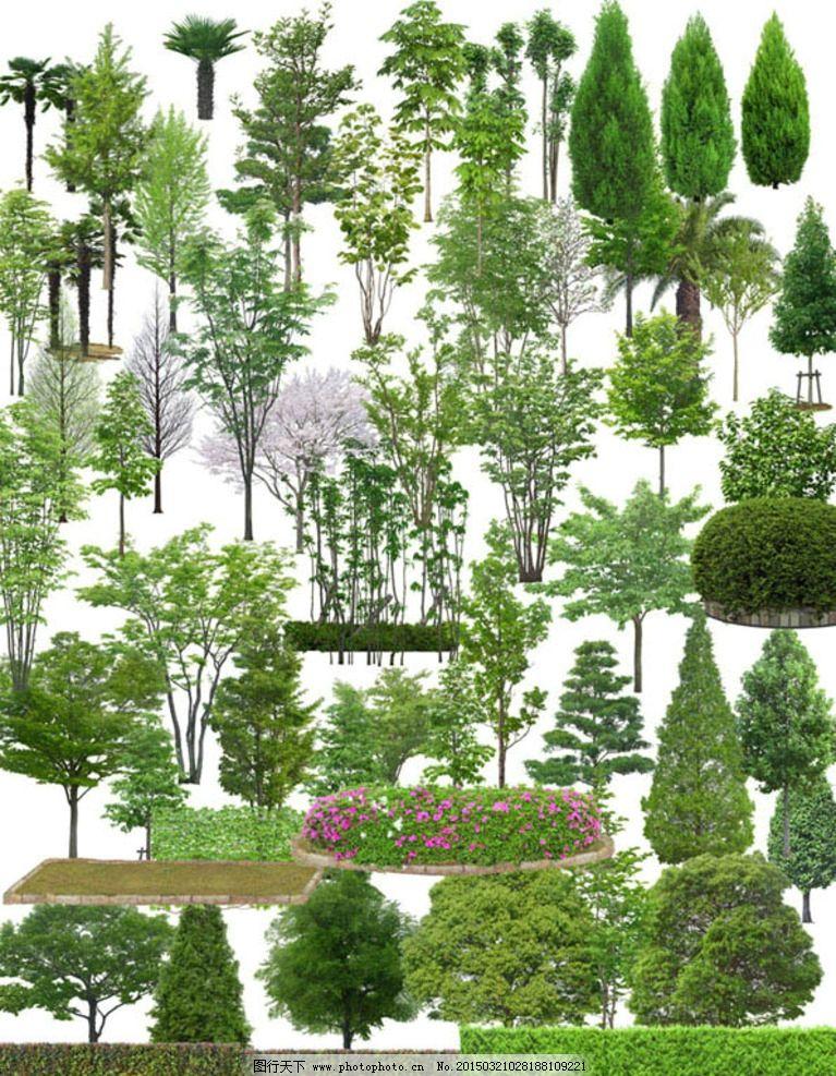 室外景观植物树木分层素材图片