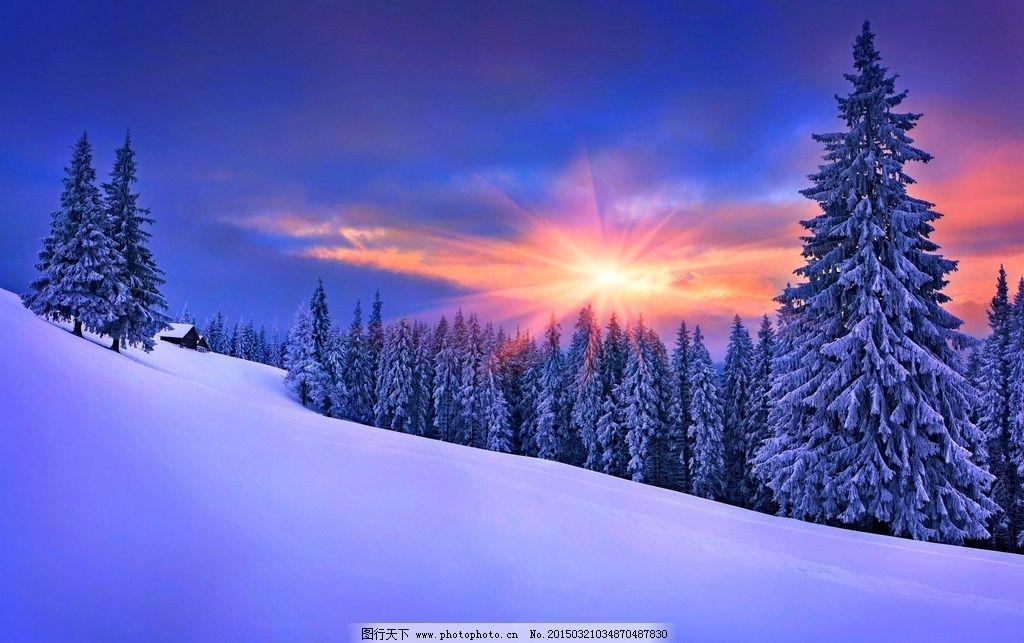 雪景 壮观雪景 大气雪景 漂亮雪景 美丽雪景 冬天雪景 树林 大树