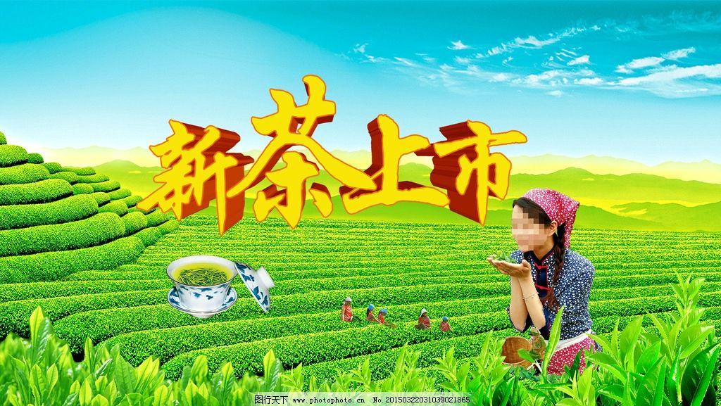 茶叶广告图片图片
