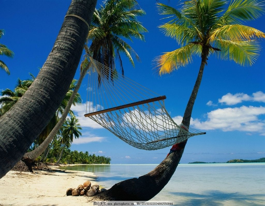 海滩风景 吊床 海滩椰树风景 海滩 椰树 海边椰树 海边 夏日海滩 海滩