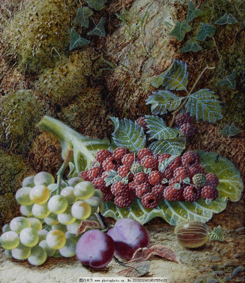 水晶葡萄 红莓 鹅莓 李子 树林中 秋天 20世纪水彩画 水彩画 设计