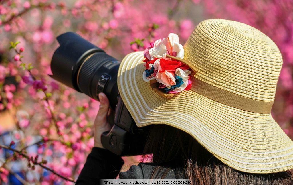 少女 背影 拍花 戴帽子 照相机 鲜花 樱花 摄影 人物图库 女性女人