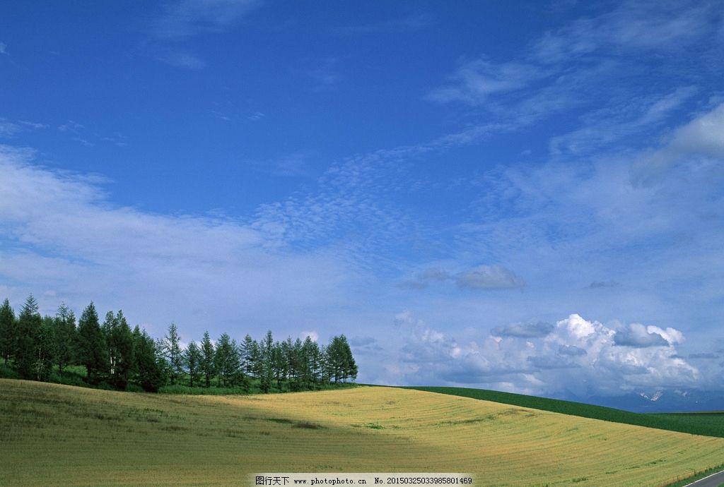 内蒙古草原图片_国内旅游