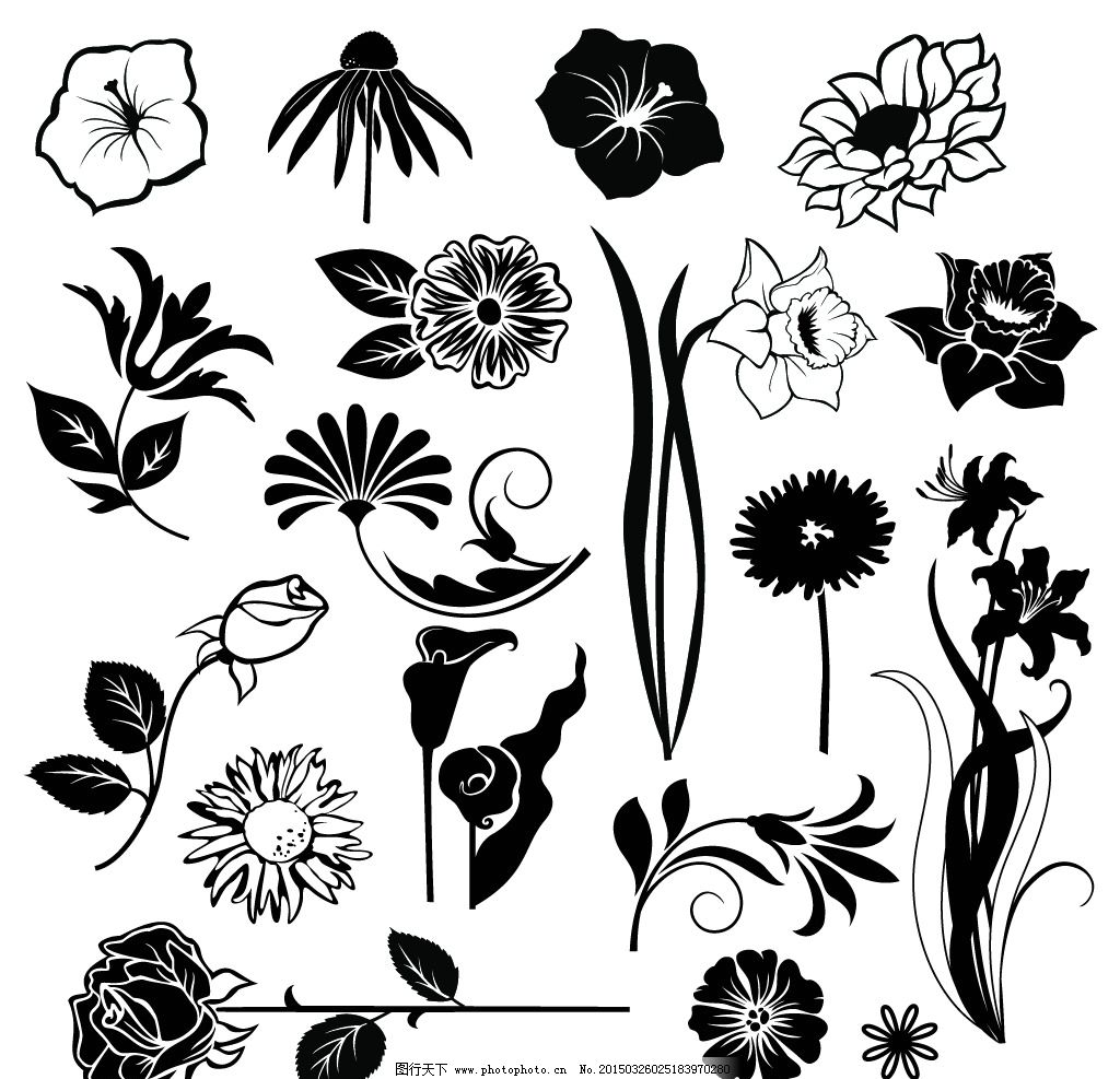 手绘花卉 花朵 鲜花 花卉插图 植物花纹 卡片底纹 设计 矢量 eps