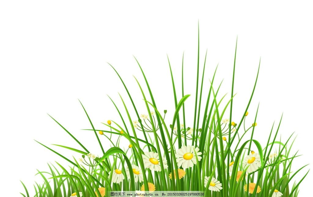 草丛 花草 花边 花朵 草地 草坪  设计 生物世界 花草  eps