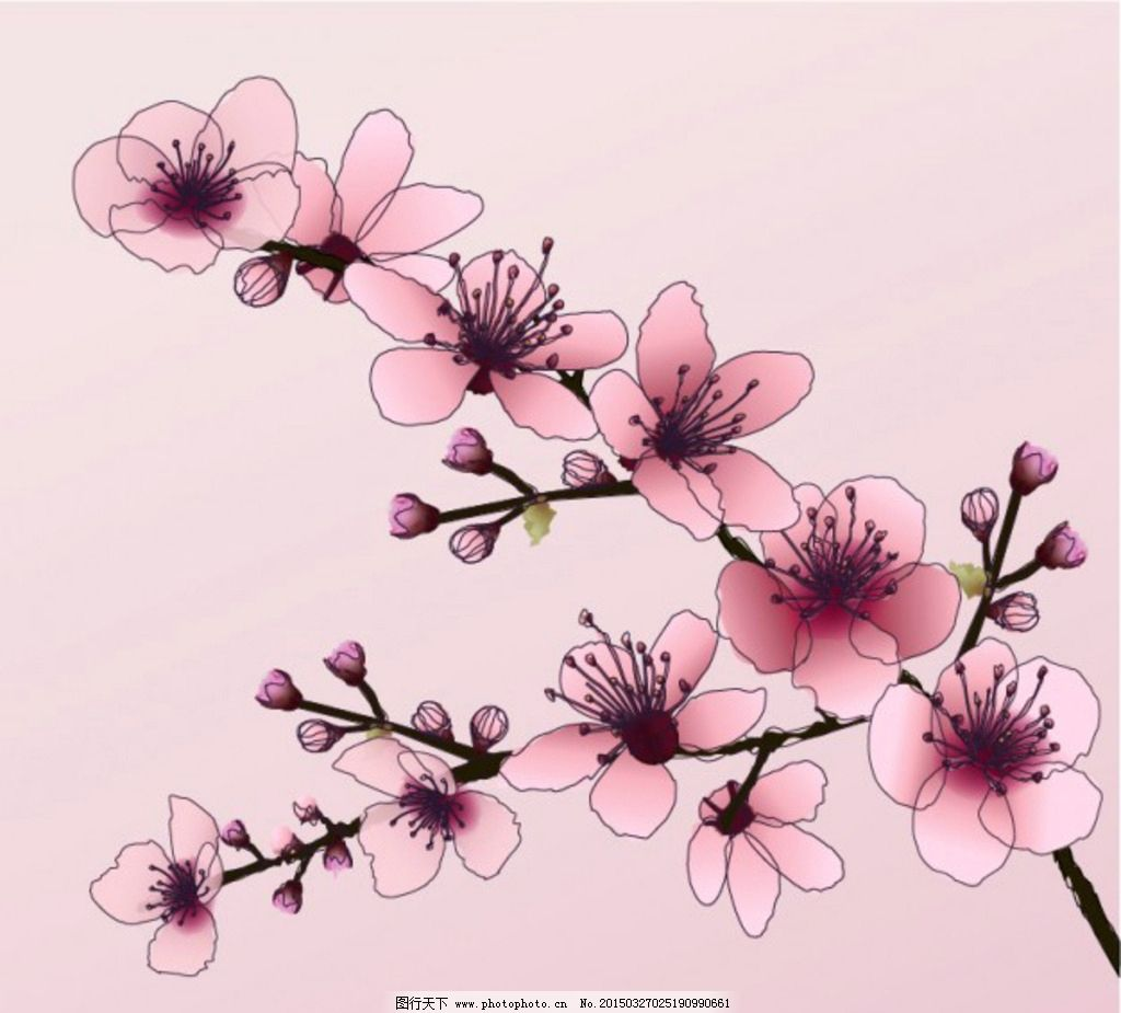 手绘水墨樱花图片