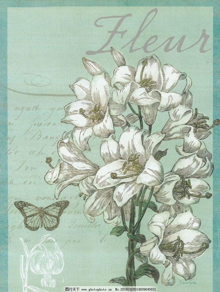 手绘百合 手绘画 花卉 植物 装饰画 挂画 欧式 复古 怀旧  设计 文化