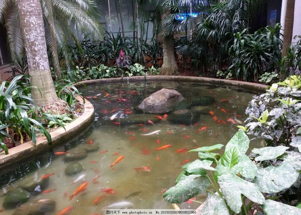 园林景观鱼池设计图片展示
