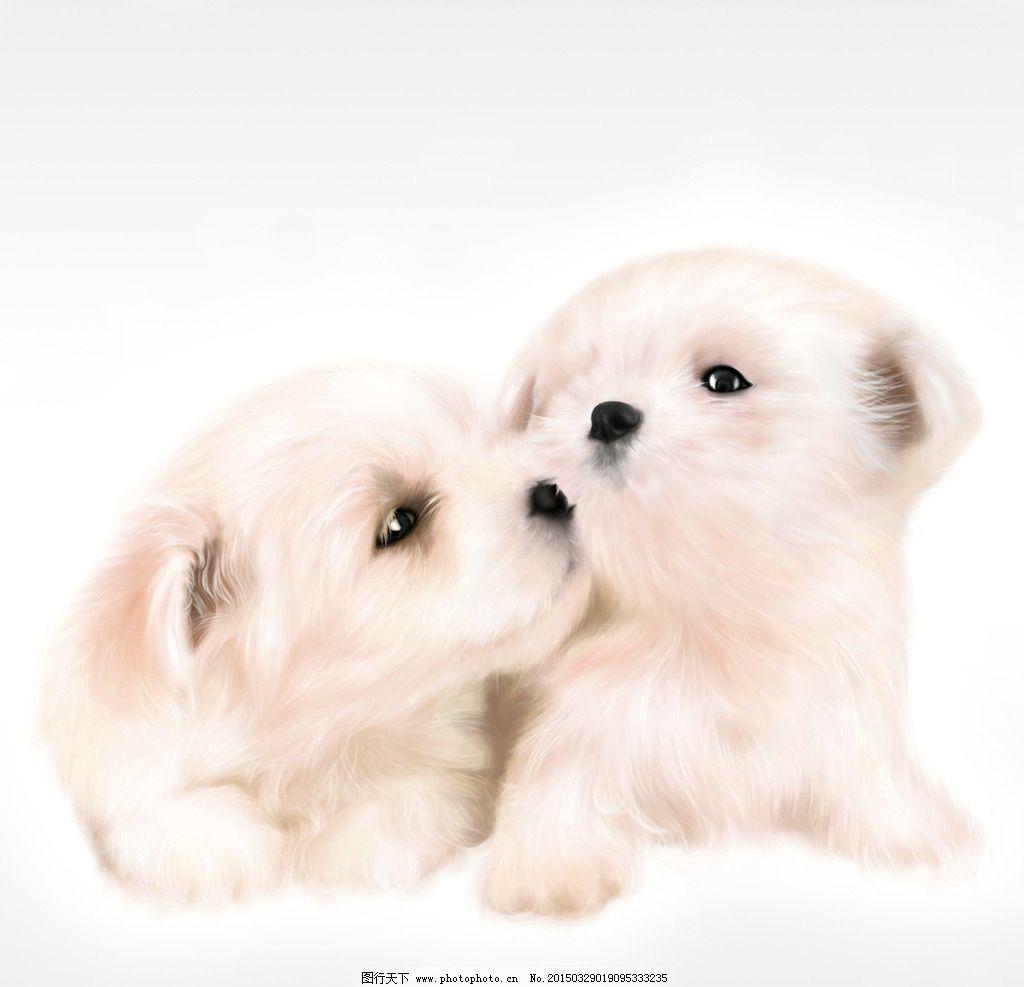 手绘宠物狗图片