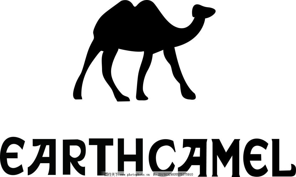 骆驼的胃部结构图