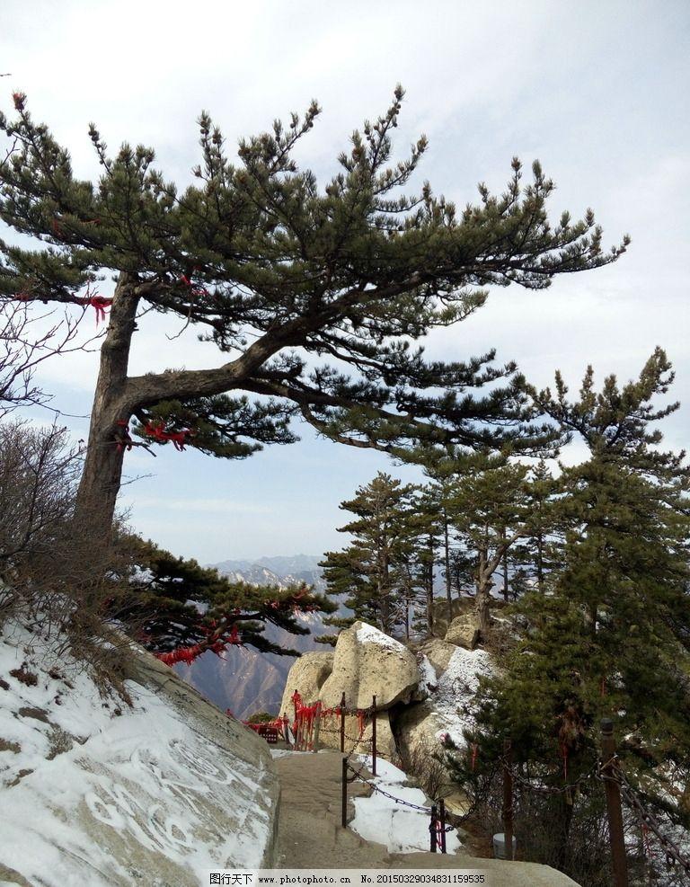 西安 华山 积雪 松树 小道 蓝天 白云 岩石 摄影 自然风光 其他72dpi
