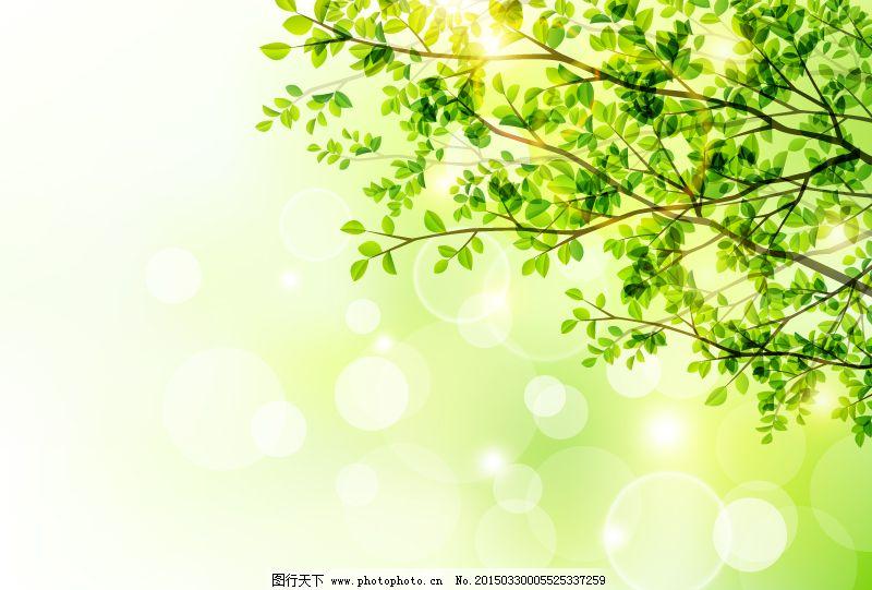 春季树木与阳光矢量图免费下载 春季 光晕 绿树 矢量图 树叶 树枝