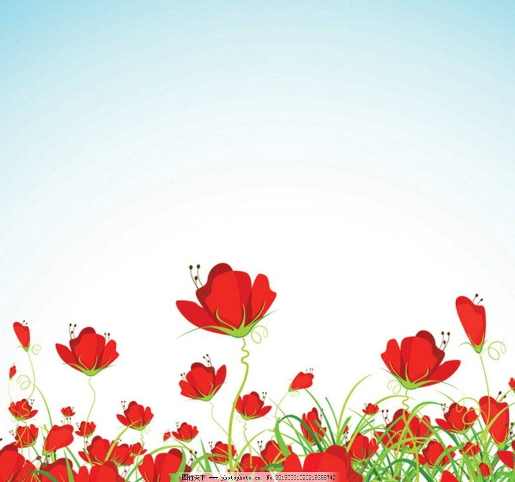 罂粟花背景图片