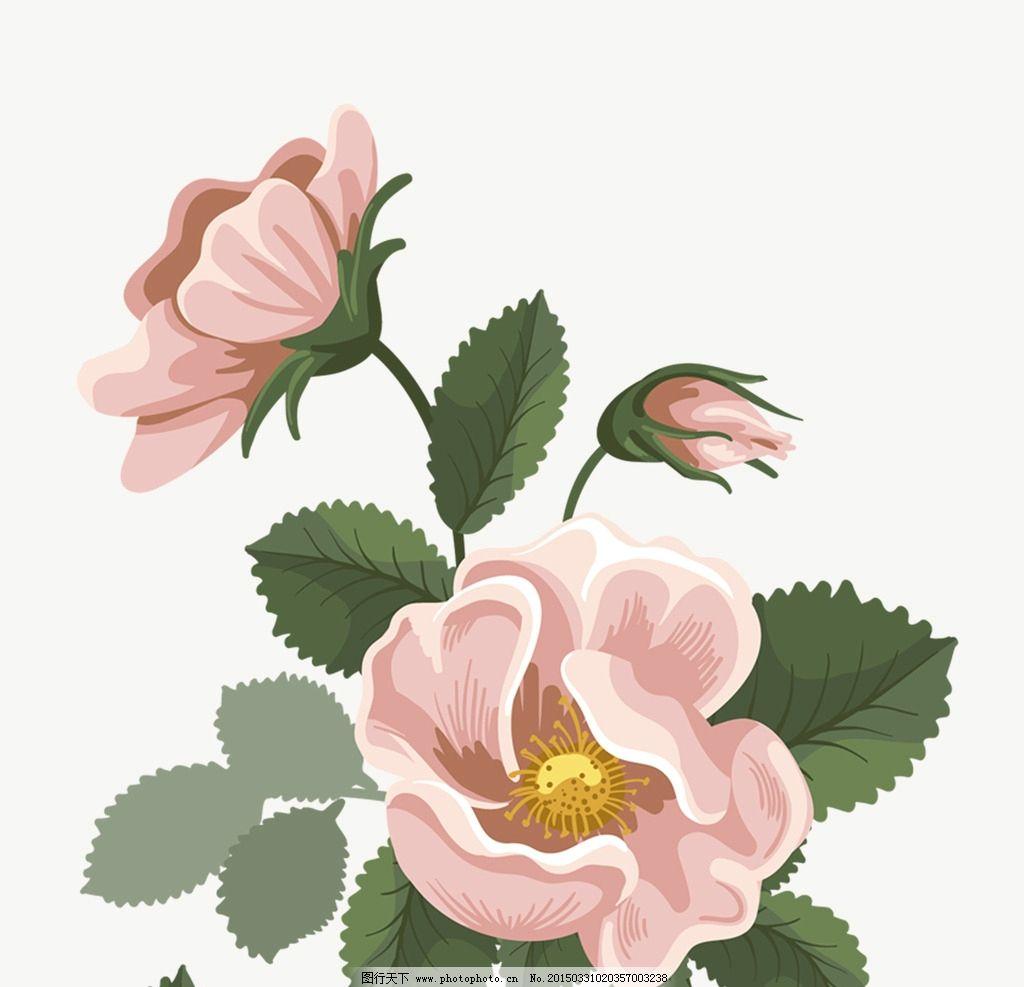 花 玫瑰花 粉色 叶子 淡雅 设计 底纹边框 花边花纹 300dpi psd
