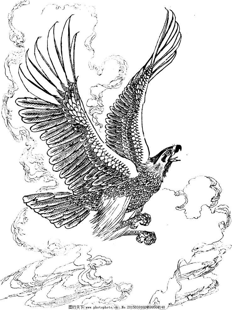 大鹏展翅纹身手稿内容图片分享