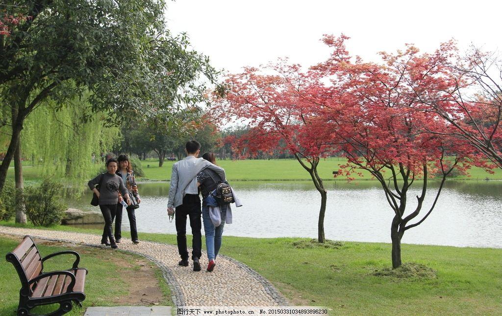 春游 风景 绿地 草皮 树木 春天风景 小湖 游人 摄影